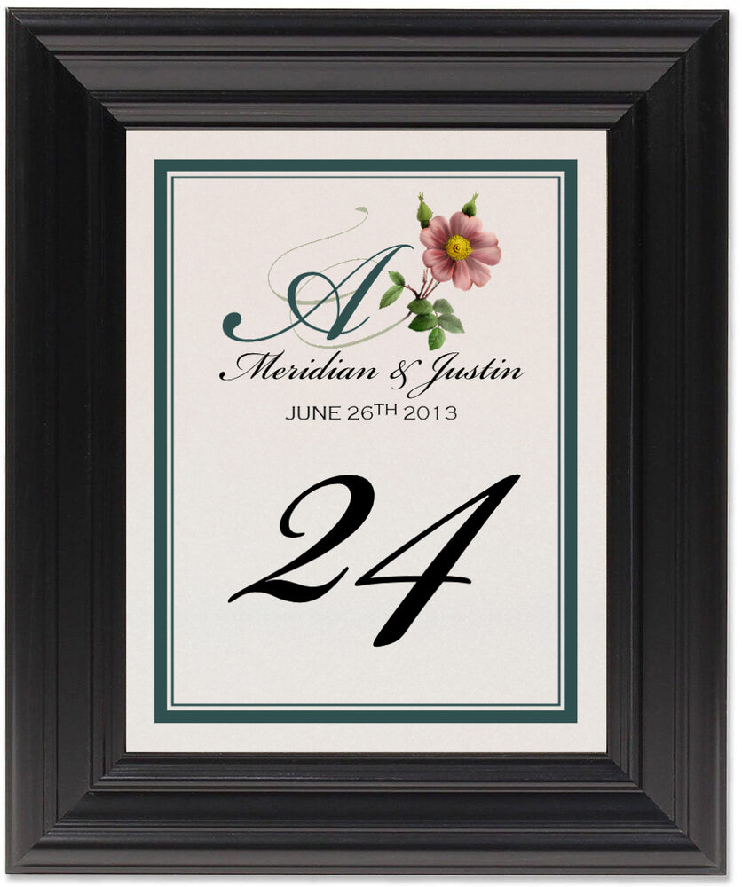 Framed Photograph of Wild Pink Rose Swirl Table Numbers