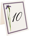 Photograph of Tented Wispy Iris Table Numbers