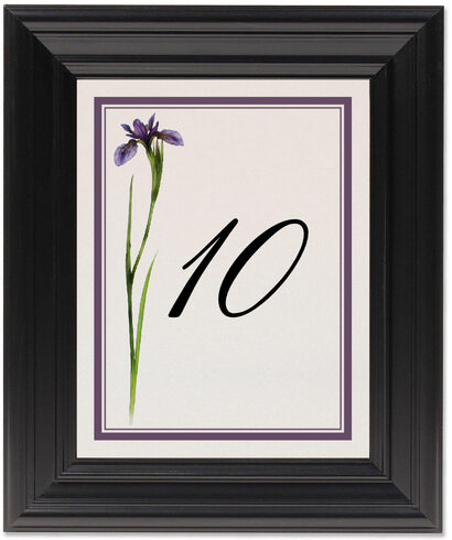 Framed Photograph of Wispy Iris Table Numbers