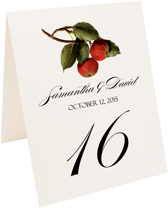 Photograph of Tented Apples Table Numbers