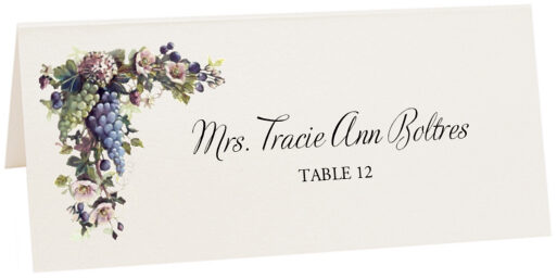 Photograph of Tented Blue and Green Grapes Place Cards