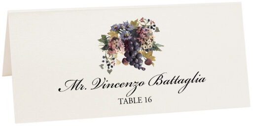 Photograph of Tented Blue Grapes and Chicory 01 Place Cards