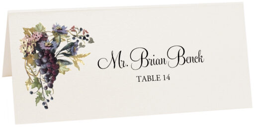 Photograph of Tented Blue Grapes and Chicory 02 Place Cards