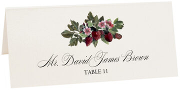 Photograph of Tented Strawberry Patch Place Cards