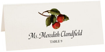 Photograph of Tented Two Apples Place Cards