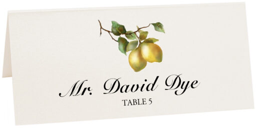 Photograph of Tented Two Lemons Place Cards