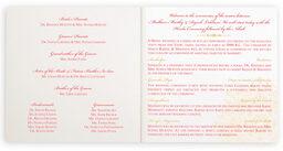 Photograph of Henna Watermark Wedding Programs