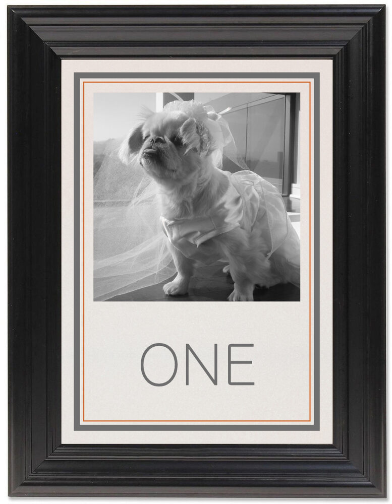 Framed Photograph of Simple Affair Photography Table Numbers