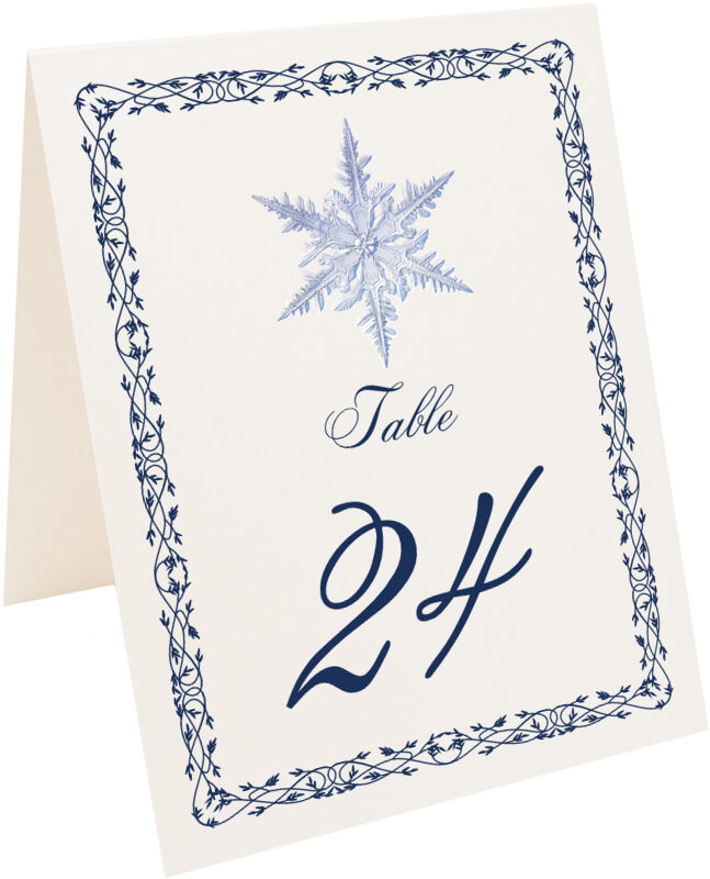 Photograph of Tented Snowflake 06 Table Numbers