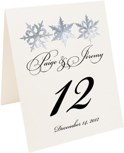Photograph of Tented Snowflake Pattern 01 Table Numbers