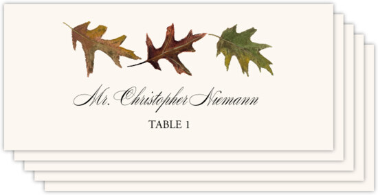 Leaf Pattern Assortment Autumn/Fall Leaves Place Cards