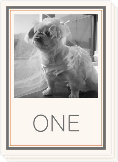 Simple Affair Photography Photo Wedding Table Numbers