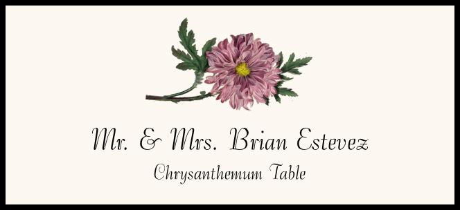 Chrysanthemum  Place Cards