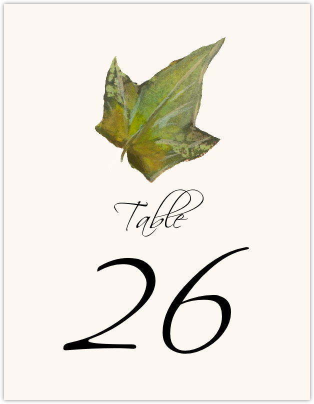 Colorful Leaves Assortment 02  Table Numbers
