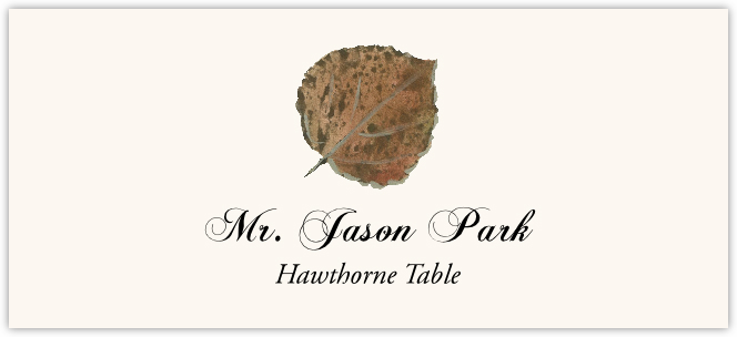 Hawthorne Colorful Leaf  Place Cards