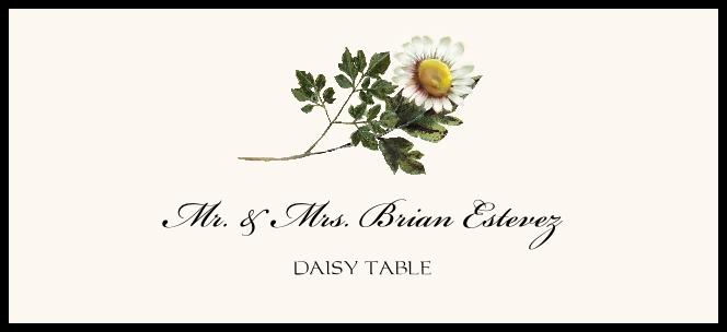 Daisy  Place Cards