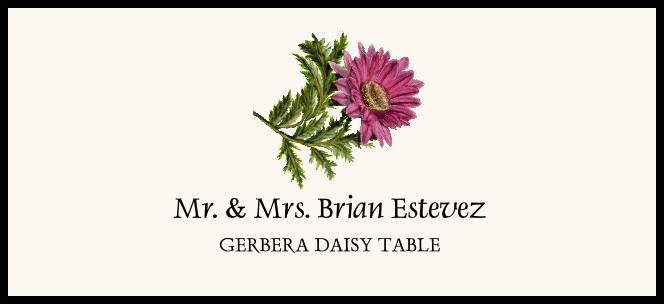 Gerbera Daisy  Place Cards