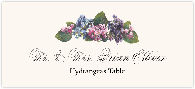 Hydrangeas  Place Cards