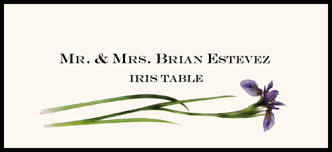 Iris  Place Cards