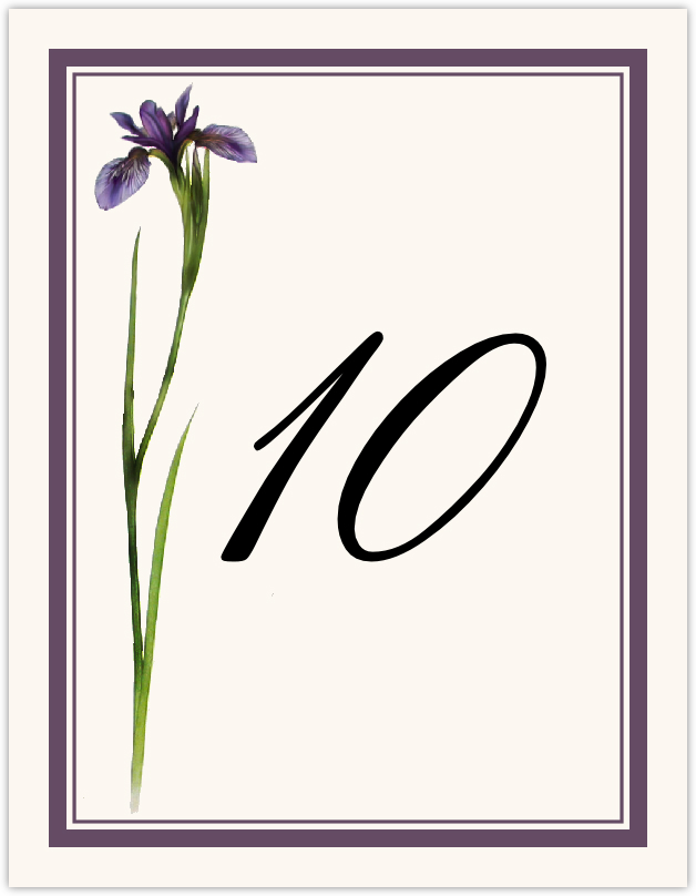 Wispy Iris  Table Numbers