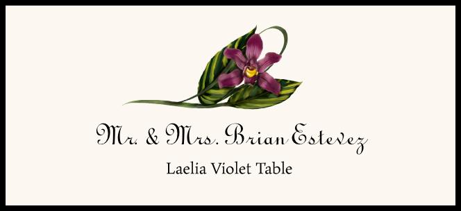 Laelia Violet  Place Cards