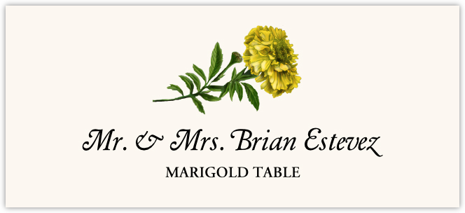 Marigold  Place Cards