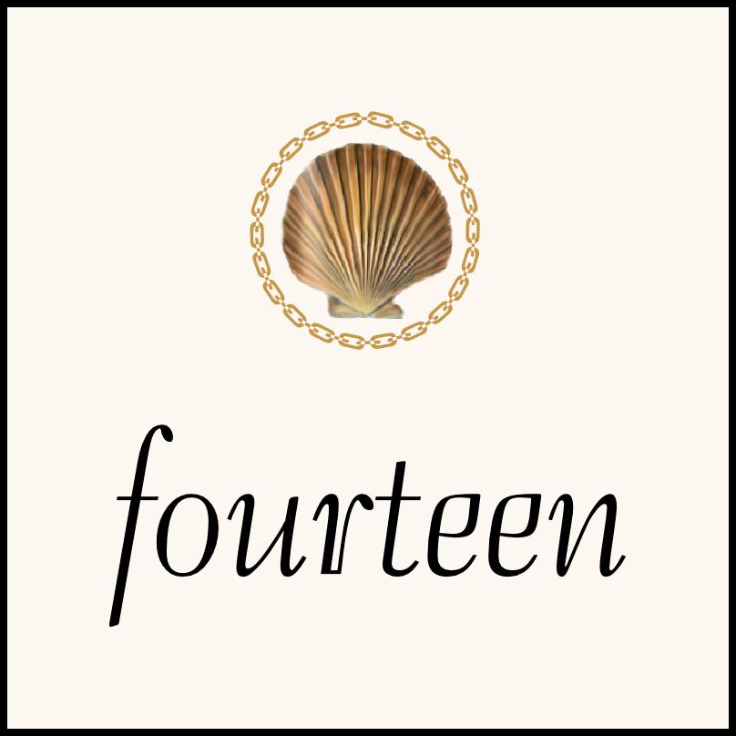 Nautilus Seashell Flourish  Table Numbers