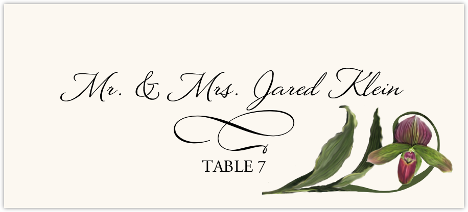 Orchid Assortment  Place Cards
