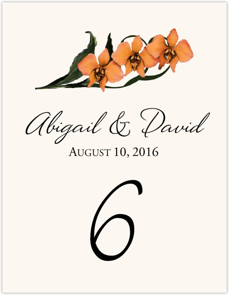 Orchid Assortment  Table Numbers