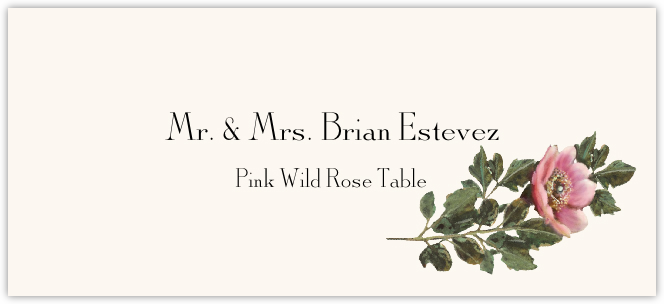 Pink Wild Rose  Place Cards