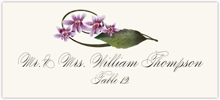 Purple Calypso Orchid  Place Cards