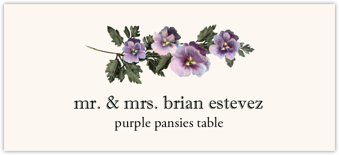Purple Pansies  Place Cards