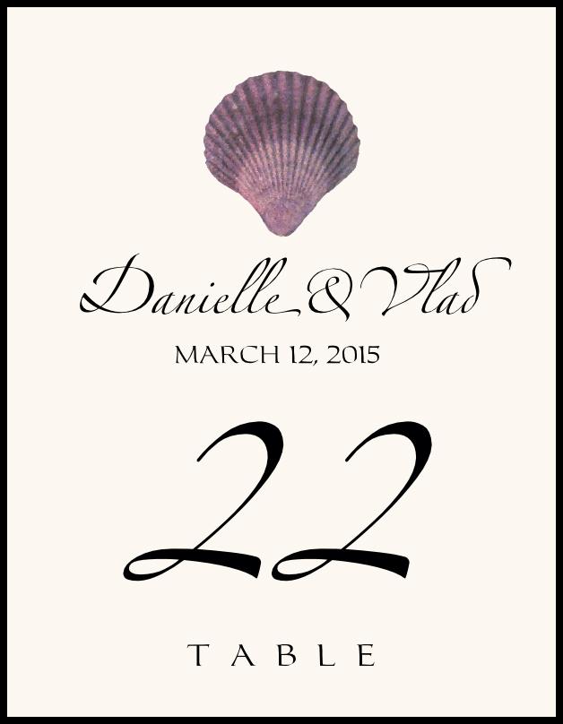 Seashell Assortment 02  Table Numbers