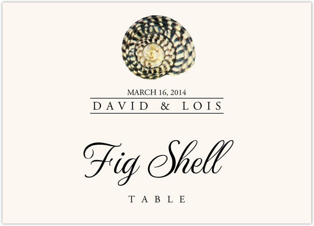 Seashell Assortment  Table Names
