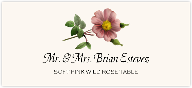 Soft Pink Wild Rose  Place Cards