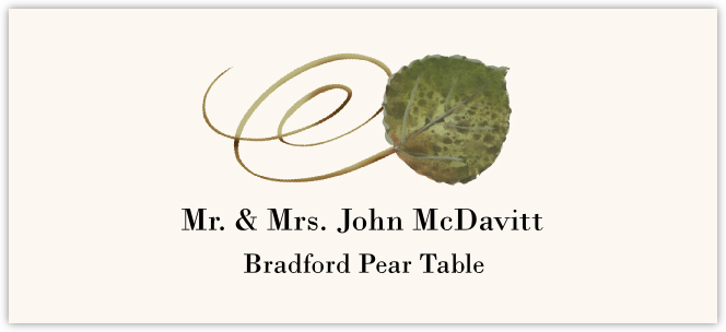 Bradford Pear Swirly Leaf  Place Cards