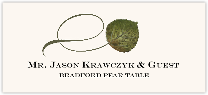 Bradford Pear Twisty Leaf  Place Cards