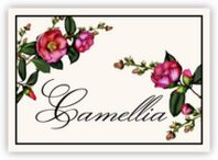 Camellia Table Names