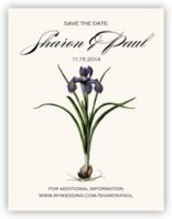 Iris Bulb Save the Dates