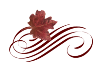 Leaf Flourish 10 Spring Flowers, Autumn Leaves, Grapes Wedding Illustration