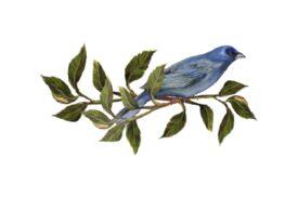Birds and Butterflies Blue Bird 02 Artwork