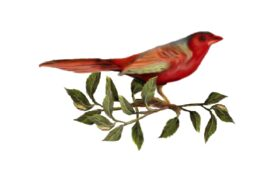 Birds and Butterflies Red Bird 02 Artwork