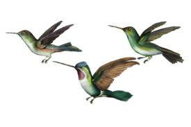 Birds and Butterflies Birds in Flight Artwork