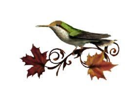 Birds and Butterflies Fall Indy Artwork