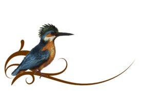 Birds and Butterflies Corinne Artwork