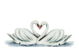 Birds and Butterflies Swans Artwork