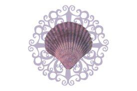 Seashells, Fish, and Beach Seashell Flourish 02 Artwork
