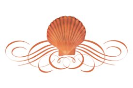 Seashells, Fish, and Beach Seashell Flourish 05 Artwork