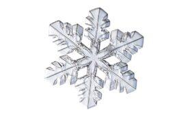 Winter and Holiday Snowflake 02 Artwork
