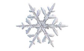 Winter and Holiday Snowflake 19 Artwork
